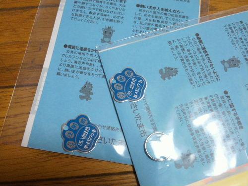 2012_04202012-4-190012.JPG