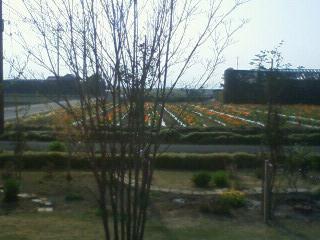 2011_04102011_4_100002.JPG